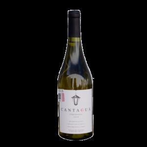 Cantagua Chardonnay